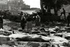 73 عامًا على مجزرة دير ياسين