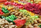 غزة: الزراعة ترفض الاشتراطات الإسرائيلية لعرقلة تسويق المنتجات الزراعية