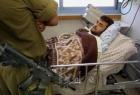 قنيطة: الأسير الجريح أيمن الكرد بحاجة للمتابعة الطبية