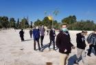"""عشرات المستوطنين يقتحمون ساحات """"المسجد الأقصى"""" بحراسةٍ مشددة"""