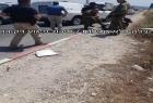قوات الاحتلال تعتقل فتاة زعمًا أنها تحاول تنفيذ عملية طعن