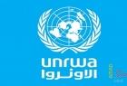 غزة: الأونروا تبدأ توزيع مساعدة نقدية للاجئي فلسطين القادمين من سوريا