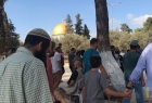 """مستوطنون يقتحمون ساحات المسجد """"الأقصى"""" بحماية شرطة الاحتلال"""