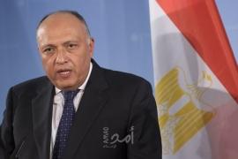 وزير الخارجية المصري يبحث مع نظيريه الفرنسي والإيرلندي الأوضاع في الأراضي الفلسطينية