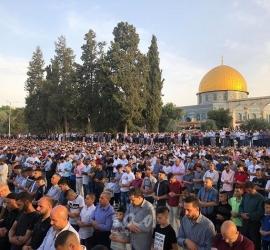 70  ألف مواطن يصلون بالأقصى في أول جمعة من رمضان - فيديو