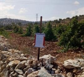 قوات الاحتلال تعلن مصادرة عشرات الدونمات من أراضي يطا جنوب الخليل