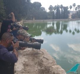 محميات فلسطين تشارك دول العالم الاحتفال باليوم العالمي للحياة البرية