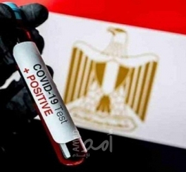 """الصحة المصرية تعلن حصيلة الوفيات والإصابات بـ""""كورونا"""""""