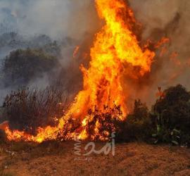 """النيران تلتهم """"جبل بارنس"""" في اليونان"""