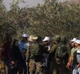 قوات الاحتلال تعتدي على مزارعين من سلفيت