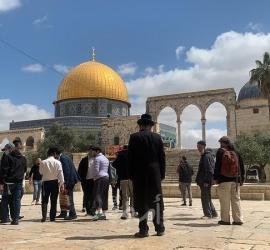 """القدس: 67 مستوطنا يقتحمون ساحات """"المسجد الاقصى"""" بحراسة مشددة"""