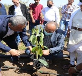خضوري والإغاثة الزراعية يفتتحان خزان للمياه الزراعية في أراضي الجامعة المهددة