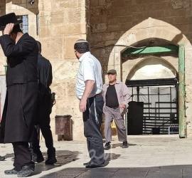 """القدس: مستوطنون يقتحمون ساحات """"المسجد الأقصى"""""""