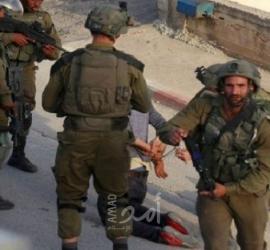 جيش الاحتلال يعتقل (12) مواطناً شرق طوباس- أسماء