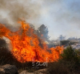 البوسنة: مصرع ستة أشخاص وإصابة آخرين في حريق