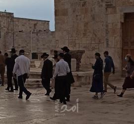"""القدس: مستوطنون يقتحمون ساحات """"الأقصى"""" بحماية مشددة"""