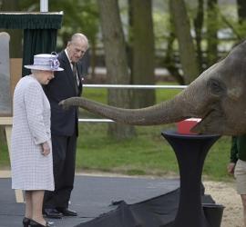 """""""فراغ كبير"""" تشعر به اليزابيث الثانية بعد رحيل الأمير فيليب"""
