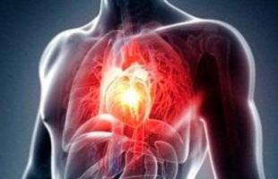 7 نصائح لحياة خالية من الأمراض