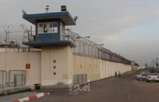 هيئة الأسرى: الصراصير تغزو أقسام الأسرى في سجن النقب