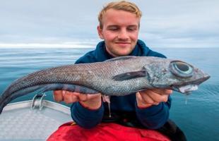 """بالصور .. صياد يعثر بالصدفة على سمكة """"من عالم آخر"""""""
