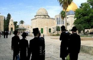 """جماعات يهودية متطرفة تدعو لاقتحام  المسجد الأقصى """"الأحد"""""""