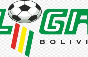 الاتحاد البوليفي يعلن تجميد نشاط كرة القدم فى بسبب المظاهرات