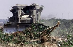 بيت لحم: مستوطنون يقتلعون 250 شتلة زيتون في بلدة كيسان