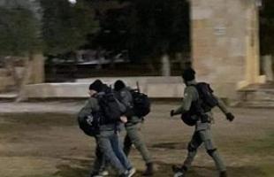 """القدس: اعتقال الشاب """"محمد أبو فرحة"""" في حي باب حطة بالبلدة القديمة"""
