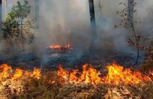 طواقم الدفاع المدني تسيطر على 15 حريقاً في جنين