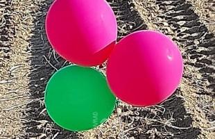 محدث (3).. اندلاع  حرائق في أحراش بلدات إسرائيلية بفعل بالونات حارقة أطلقت من غزة