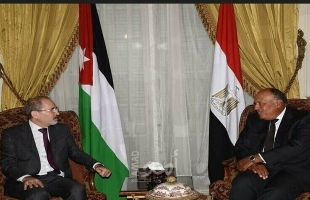 شكرى والصفدي: الدولة الفلسطينية وعاصمتها القدس الشرقية السبيل الوحيد لحل الصراع