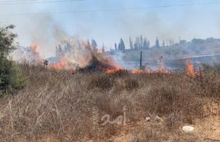 13 حريق اندلع في أحراش بلدات إسرائيلية بفعل بالونات غزة الحارقة- فيديو وصور