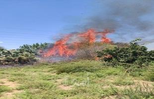 محدث.. النيران تلتهم دونمات كبيرة من أحراش بلدات إسرائيلية بفعل بالونات حارقة- فيديو وصور