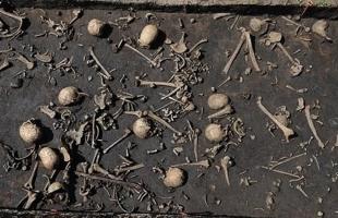 بعد 3 آلاف عام: عظام تفسر كيف استطاع الإنسان هضم الحليب