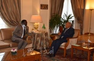 أبو الغيط يبحث تنفيذ اتفاق جوبا للسلام مع رئيس حركة تحرير السودان