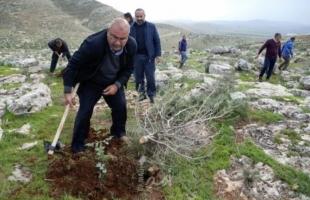 فرانس برس: فلسطينيون يعيدون زرع أشجار اقتلعتها قوات الاحتلال في الضفة الغربية