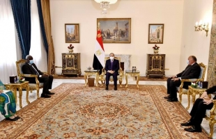 السيسي: نرفض أي عمل يمس بحقوق مصر في مياه النيل