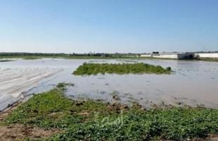 الخارجية الفلسطينية تدين جريمة إغراق أراضي المزارعين شرق غزة