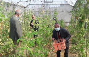 الإغاثة الزراعية تنفذ مبادرة نحو مجتمع صامد لتعزيز صمود المزارعين في شمال القطاع
