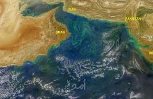 رويترز: تقارير عن هجوم على سفينة قبالة ساحل عُمان ومقتل اثنين من طاقمها