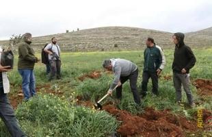 طولكرم: مستوطنون يمنعون مزارعاً من حراثة أرضه