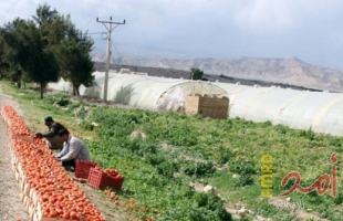 زراعة حماس تصدر تنويهاً مهماً للمزارعين والتجار