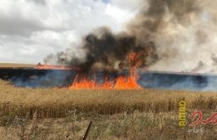 خبير عسكري إسرائيلي : المرحلة في غزة بين شفا الهاوية و التسوية