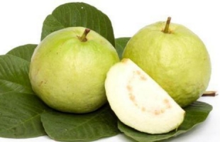 فوائد تناول الجوافة على صحة الجسم