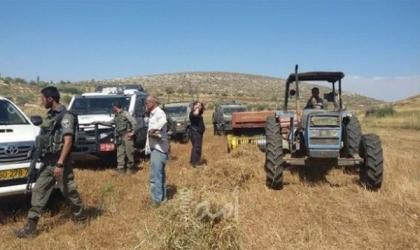 محدث- سلفيت: إصابة شاب وتحطيم مركبة وتخريب غرفة زراعية في اعتداء للمستوطنين ببلدة كفر الديك