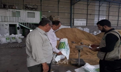 زراعة غزة : خسائر الدواجن جراء موجة الحر (900.000) شيقل