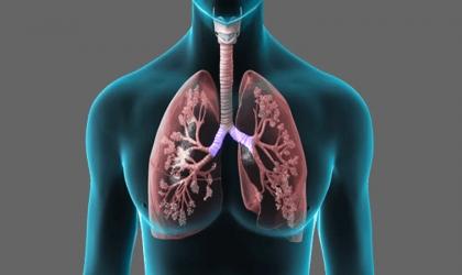 3 فيتامينات يجب أن تتناولها لتحسين صحة الرئة
