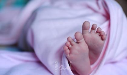 داخلية غزة تُسجل 15269 مولود جديد خلال الربع الثالث من هذا العام