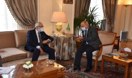 أبو الغيط يلتقي وزير الخارجية بحكومة الوفاق الوطني الليبية