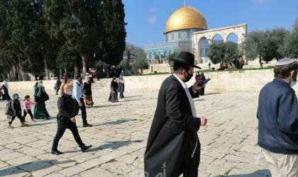 مركز الإنسان يدين سياسة سلطات الاحتلال التهويدية في القدس